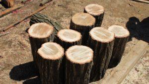 余った原木を活用