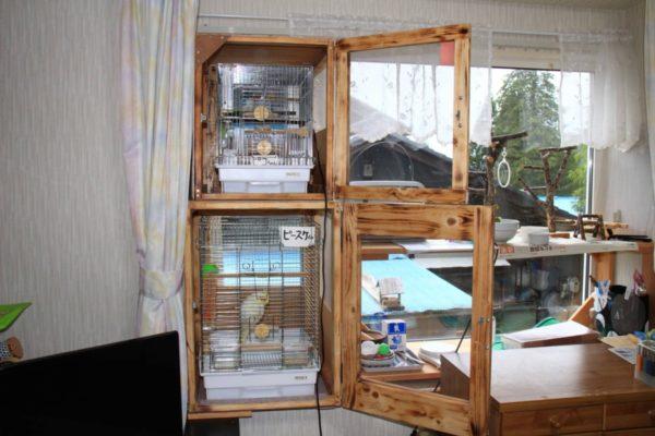 インコの二段棚(ラック)で省スペース化と快適な生活を。